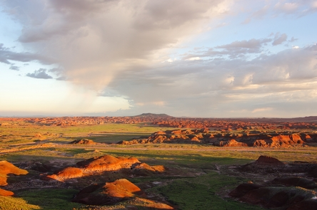 Petrified Forest National Wilderness AreaSunrise and sunset are favorite times to view the colorful Painted Desert of the Petrified Forest National Wilderness Area