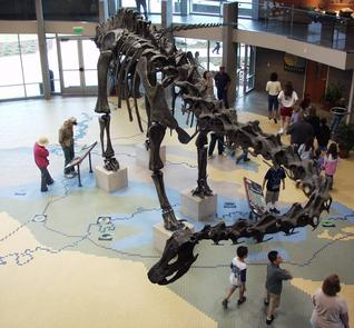 Main Hall of the Utah Field HouseThis 22,000 square foot facility located in the heart of the Uinta Basin and Dinosaurland