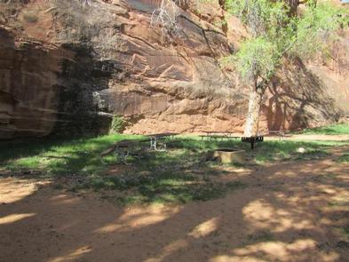 Preview photo of Moonflower Canyon Group Site