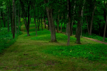 Conical Mounds Leading to Fire PointFollow a line of conical mounds that will lead you out to Fire Point which overlooks the Mississippi River.