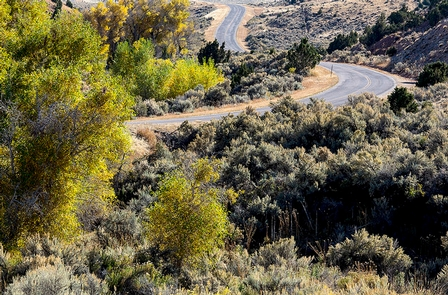 Seminoe to Alcova BywayA road serpentines through sagebrush and yellowing aspen trees.