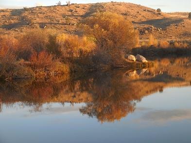 CCC Ponds/Pinedale PathwayA pond reflects the blue sky and red, yellow and orange foliage around the pond on a crisp fall evening.