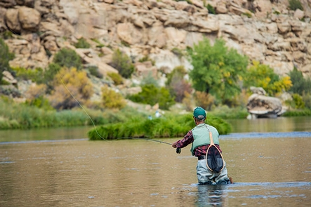 Fly fisherman on the San Juan RiverA man standing mid-thigh in the San Juan River, casting his fly fishing line.