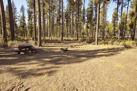 Preview photo of Crescent Creek Campground
