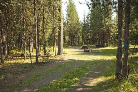 COW MEADOW CAMPGROUND