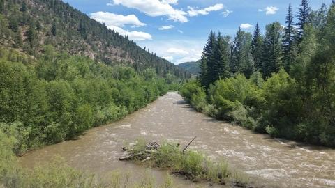 San Miguel River: Lower Beaver Creek