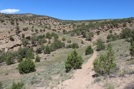 Gunnison Gorge NCA: Eagle Valley Trail