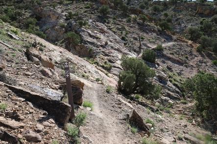 Smith Mountain Trail