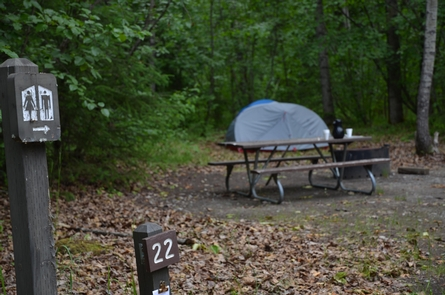 Campsite 22Just one campsite in the sleepy Dyea campground