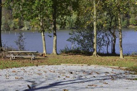 Bush Recreation Area