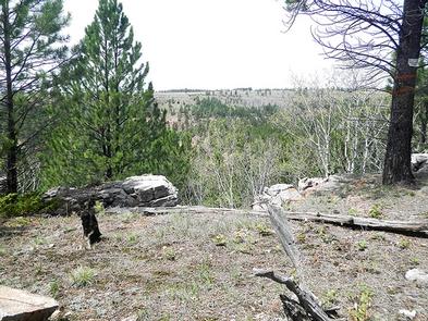 Preview photo of Mallo Trail