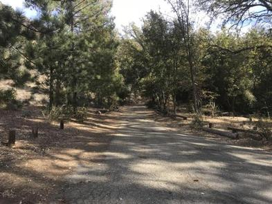 DAVY BROWN CAMPGROUND