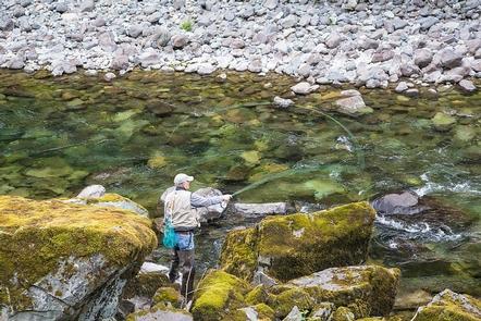 Fishing on the Quartzville Creek Wild and Scenic River