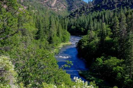 Upper Klamath Wild and Scenic RiverBankfull Upper Klamath Wild and Scenic River