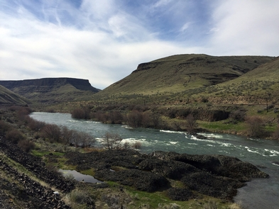 Lower Deschutes Wild and Scenic RiverBasalt outcrop on the Lower Deschutes River