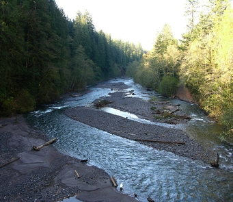 Salmon Wild and Scenic RiverBraided Sandy River