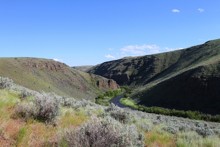 Powder Wild and Scenic RiverSpringtime on the Powder River