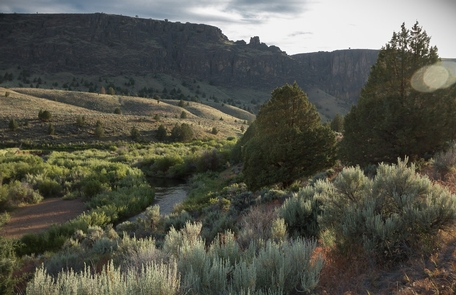 North Fork Owyhee Wild and Scenic RiverEvening on the North Fork Owyhee Wild and Scenic River