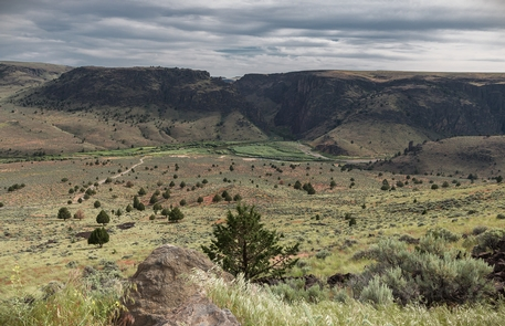 North Fork Owyhee Wild and Scenic RiverThe road down to Three Forks Recreation Site