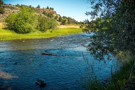 Donner ьnd Blitzen Wild and Scenic RiverDonner und Blitzen Wild and Scenic River riparian zone