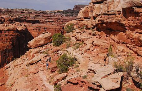 Labyrinth Canyon
