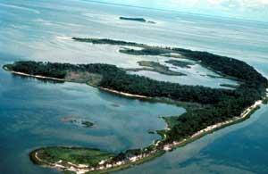 Cedar Keys Wilderness